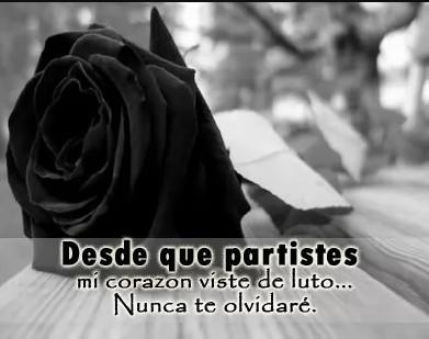 Nunca te olvidare