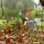 Imágenes de luto con frases bonitas que ayudarán a superar el duelo